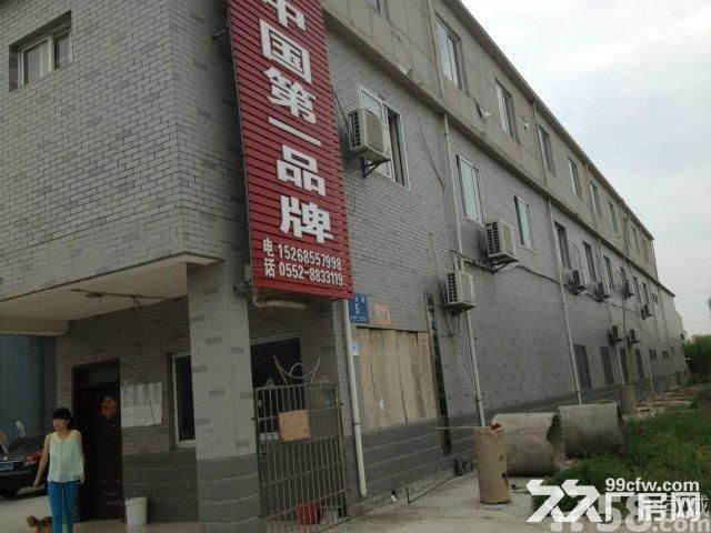 怀远县工业园区兴业路五号有厂房出租-图(3)