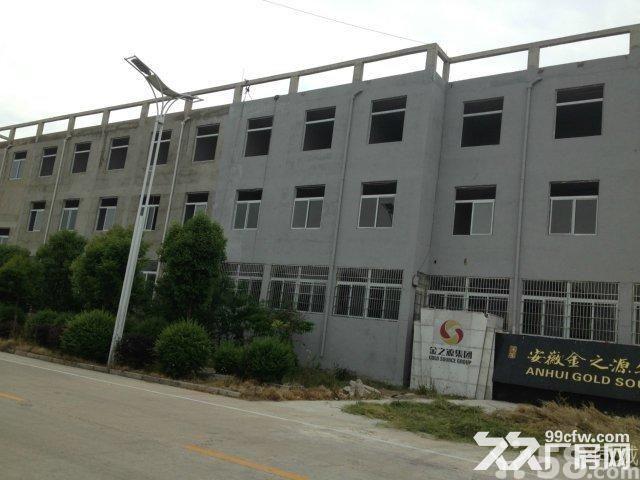 怀远县工业园区兴业路五号有厂房出租-图(4)