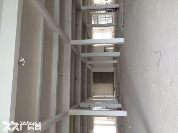 怀远县工业园兴业路5号厂房出租-图(3)