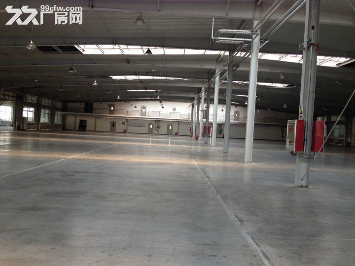 东风大街1万平厂房(库房)可分割出租-图(3)