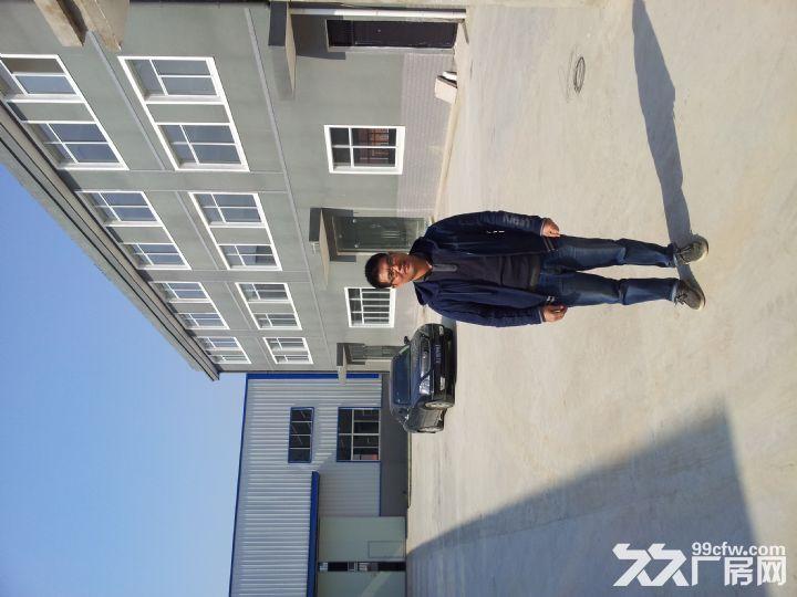 淮上区工业园标准框架结构厂房出租-图(3)