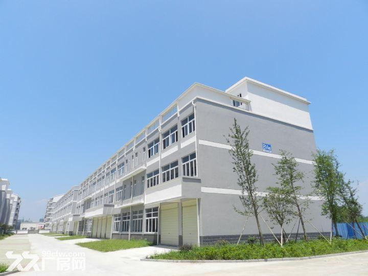 潜山厂房出租潜山办公厂房出租-图(2)