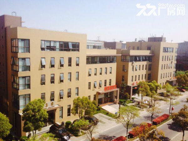 洛阳800平㎡厂房出租售,大车可进出,层高6米▽-图(1)