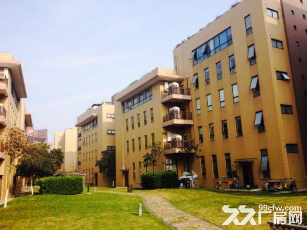 洛阳800平㎡厂房出租售,大车可进出,层高6米▽-图(3)