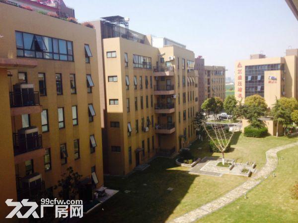 洛阳800平㎡厂房出租售,大车可进出,层高6米▽-图(4)