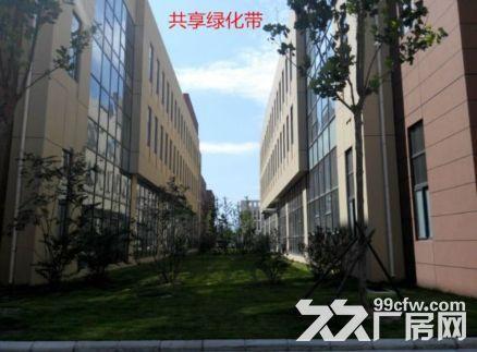 焦作独门独院厂房水电齐全欢迎各大企业入驻▽▽▽▽-图(2)