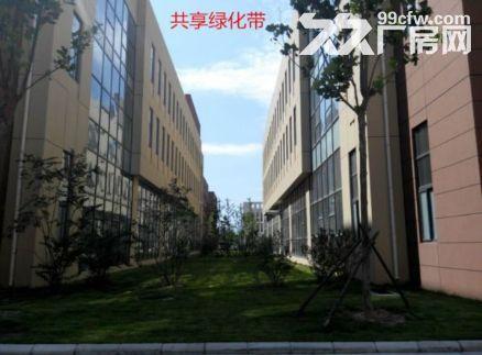 洛阳新建600平起租售标准厂房配套齐▽☆▽☆▽☆▽☆▽☆-图(2)