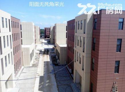 洛阳新建600平起租售标准厂房配套齐▽☆▽☆▽☆▽☆▽☆-图(4)