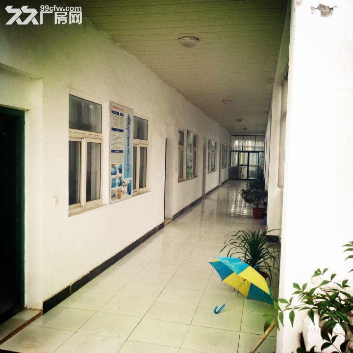 滁宁快速通道黄金地段4000平米标准厂房及配套招租-图(1)