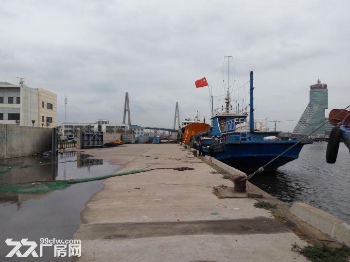 滨海新区海河口岸线码头招租-图(1)
