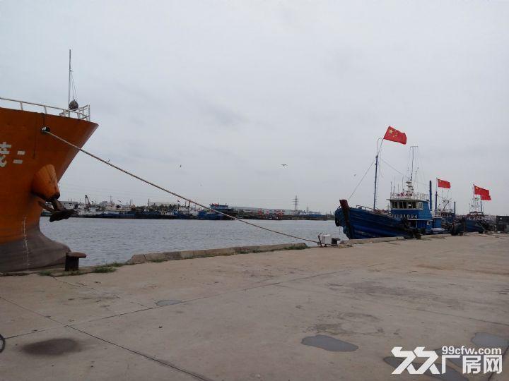 滨海新区海河口岸线码头招租-图(2)