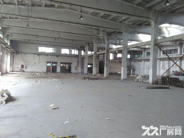 长清皮革实验厂仓库出租-图(1)
