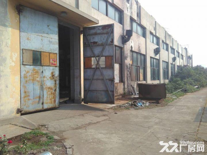 长清皮革实验厂仓库出租-图(2)