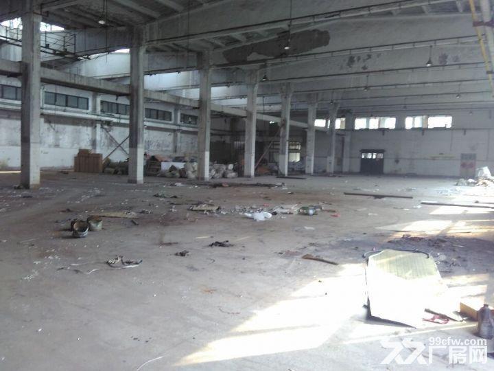 长清皮革实验厂仓库出租-图(3)