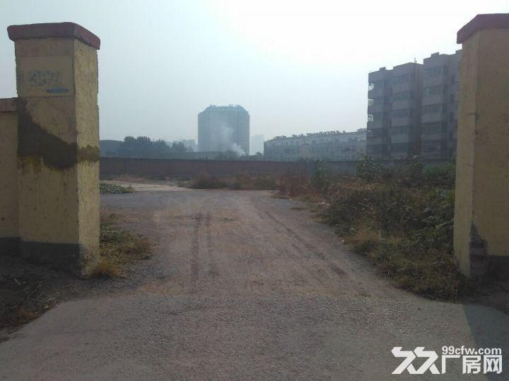 长清皮革实验厂仓库出租-图(6)