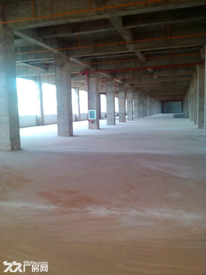晋宁晋城镇40余亩标准化厂房出租或售-图(1)