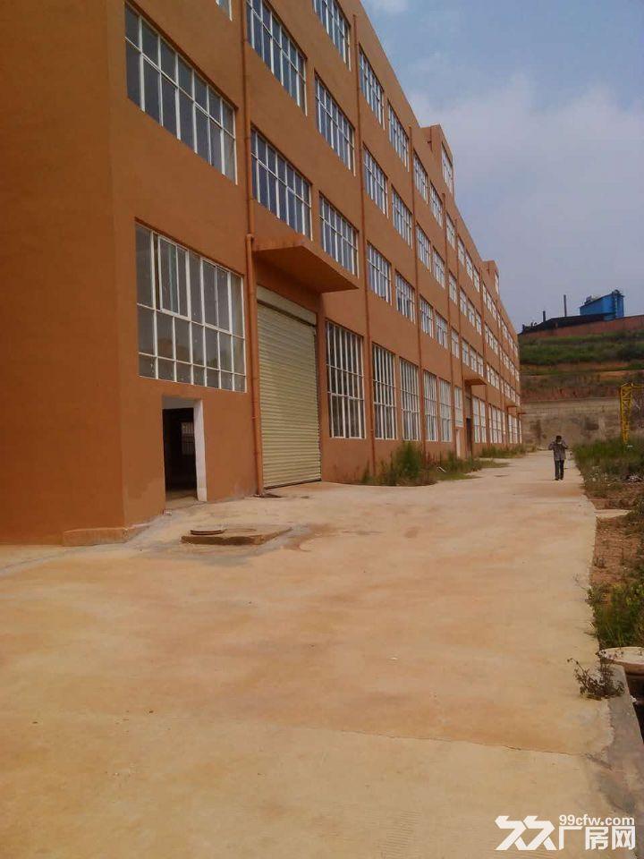 晋宁晋城镇40余亩标准化厂房出租或售-图(2)