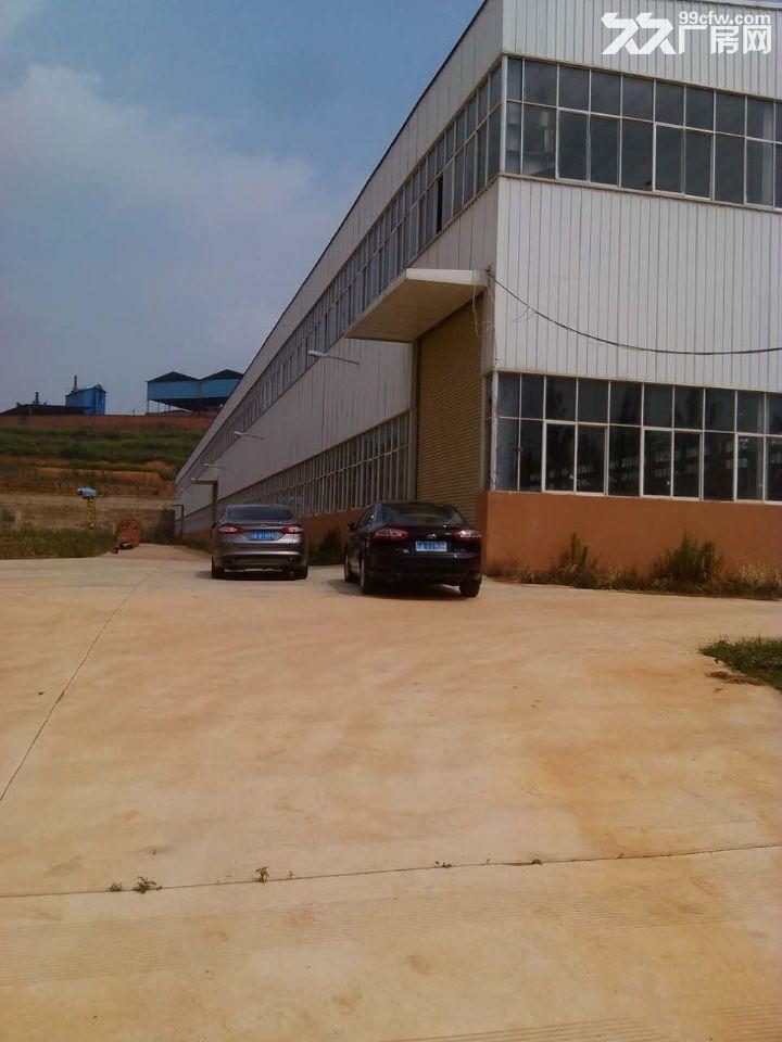 晋宁晋城镇40余亩标准化厂房出租或售-图(3)