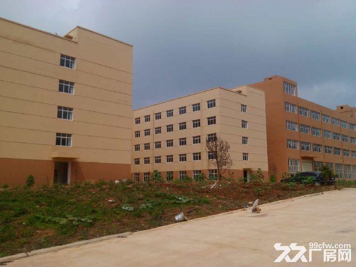 晋宁晋城镇40余亩标准化厂房出租或售-图(4)