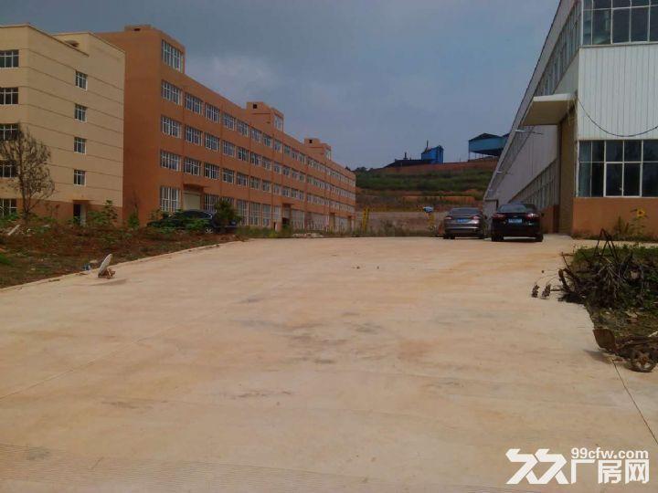 晋宁晋城镇40余亩标准化厂房出租或售-图(5)