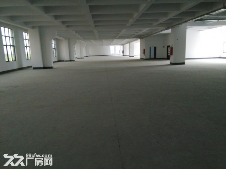 1−−3层8100平方米厂房出租,长60*48米,高4.5米-图(1)