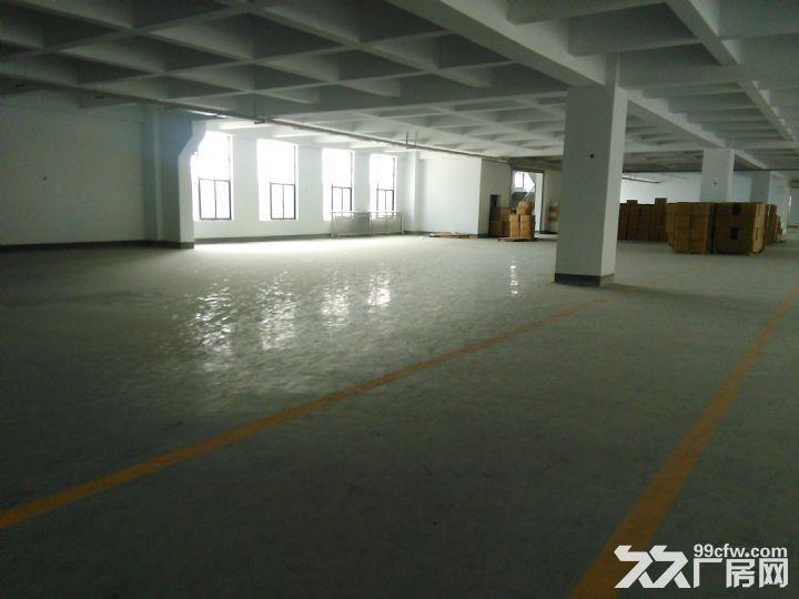 1−−3层8100平方米厂房出租,长60*48米,高4.5米-图(4)