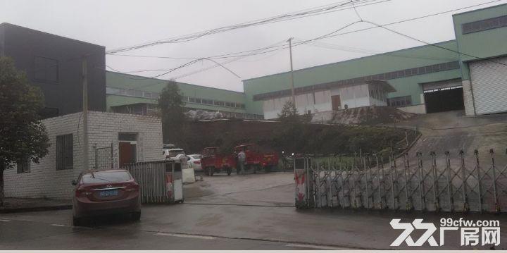 乐至县西郊工业园区厂房出租-图(8)