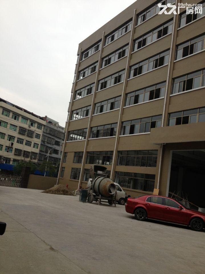 温溪镇八号工业区标准化新厂房出租-图(3)