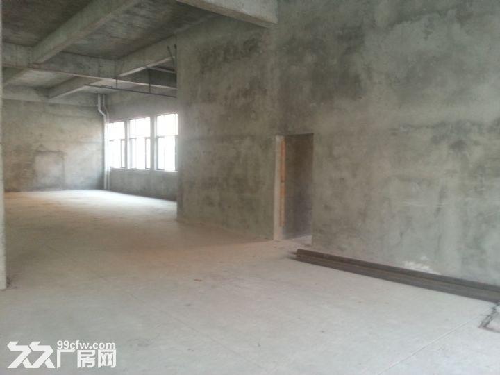 【2000平厂房租售】,价格面议-图(1)