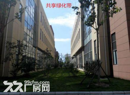 洛阳800平㎡厂房出租售,大车可进出,层高6米◇-图(2)