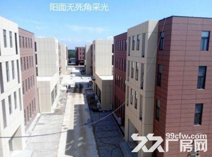 洛阳800平㎡厂房出租售,大车可进出,层高6米◇-图(4)