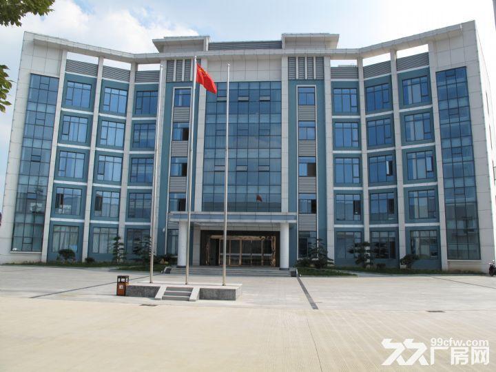 全新钢结构厂房出租外加办公楼2层和5层出租价格面议