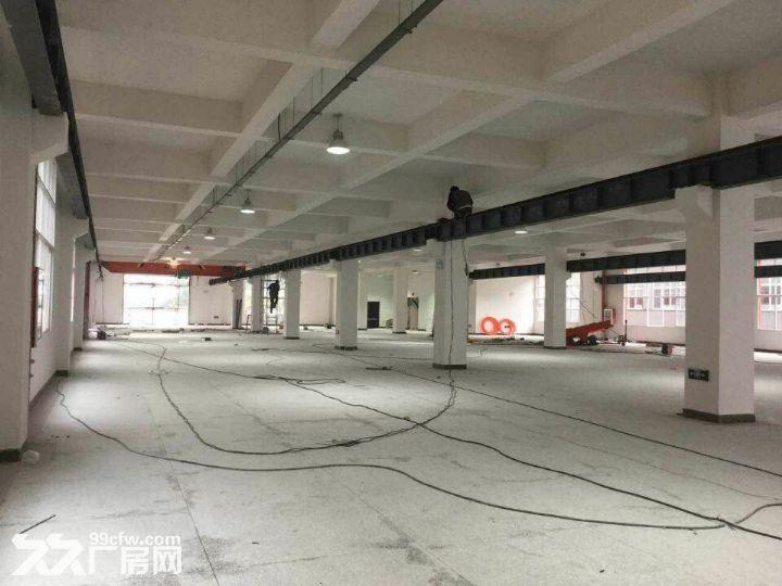 龙里千家卡空港经济产业园B区H3~H5出租1号标准新厂房-图(3)