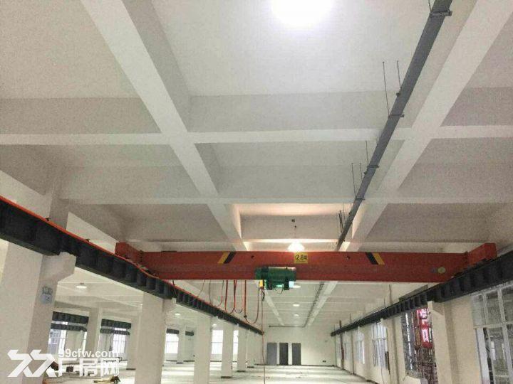 龙里千家卡空港经济产业园B区H3~H5出租1号标准新厂房-图(4)