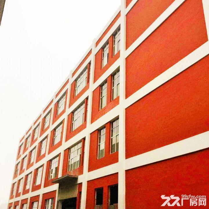 龙里千家卡空港经济产业园B区H3~H5出租1号标准新厂房-图(5)