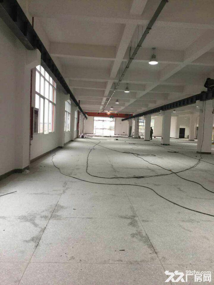 龙里千家卡空港经济产业园B区H3~H5出租1号标准新厂房-图(7)