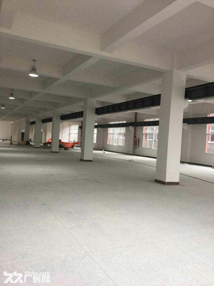 龙里千家卡空港经济产业园B区H3~H5出租1号标准新厂房-图(8)