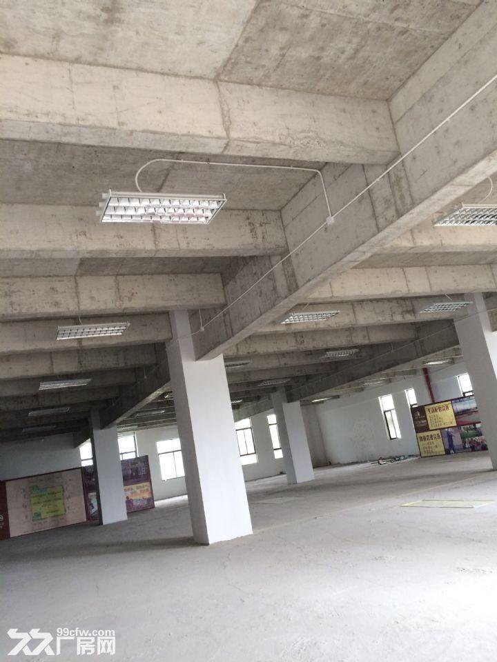 国道旁600−−−2500平方段厂房出租(租售)-图(3)