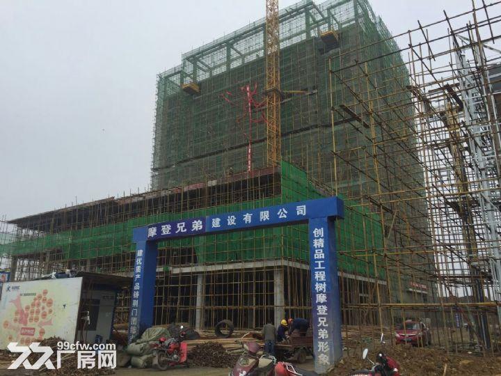 荆门全新厂房318平米54万元出售-图(3)