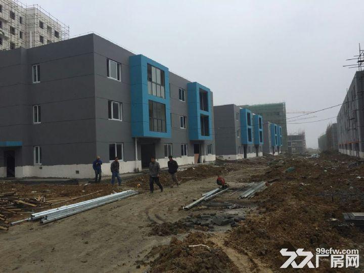 荆门全新厂房318平米54万元出售-图(4)