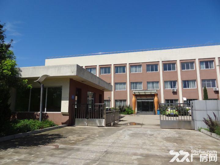 沧州经济开发区厂房可租可售-图(3)