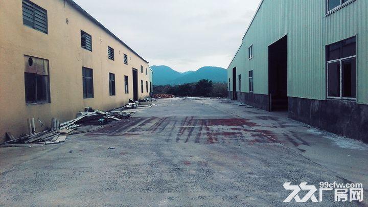 独院单层厂房2700平米出租-图(6)