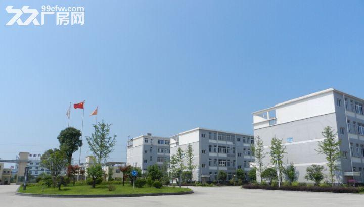 安徽安庆潜山厂房出租潜山做电商场地出租-图(2)