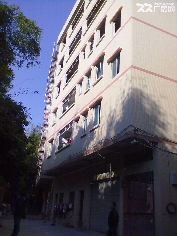 从化区镇泰工业园侧边有一栋六层半880平方楼房永久转让-图(5)