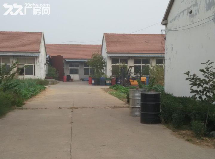 莒县陵阳厂房出租-图(2)