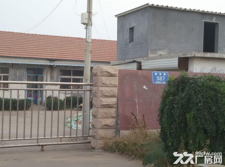 莒县陵阳厂房出租-图(5)