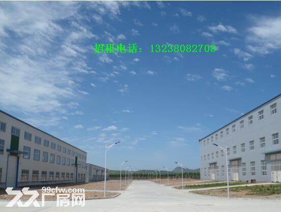 长兴岛带吊车新建大型厂房出租-图(1)