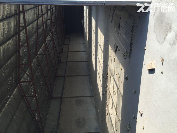 厂房出租水电齐全有意者联系13121558891-图(5)