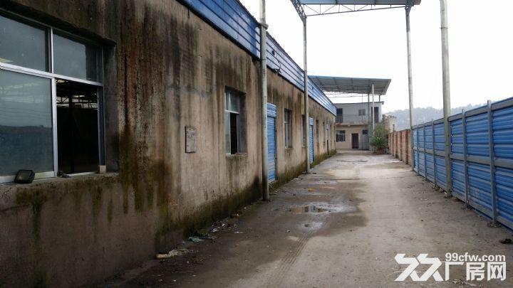 3000平独门独院钢结构厂房出租适用于生产加工及仓储-图(5)
