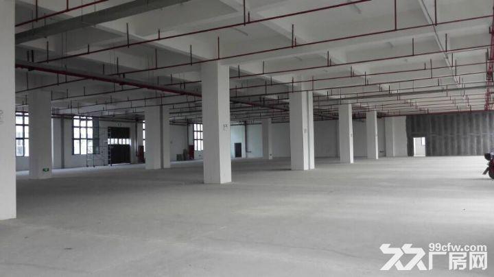 厂房出租1万平米可分割宁海高速出口-图(1)